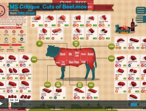 Infographic Critique: Cuts of Beef