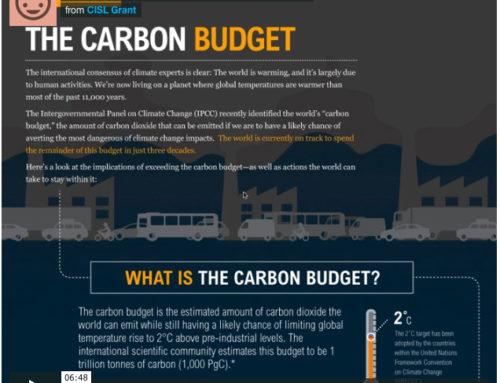 Infographic Critique: Carbon Budget
