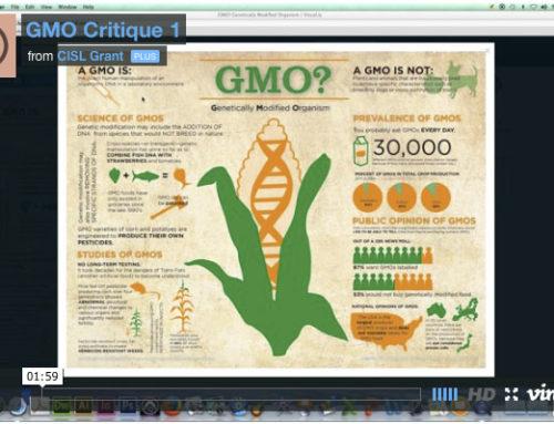 Infographic Critique: GMO 1