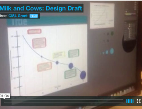 More Milk, Less Cows Early Design