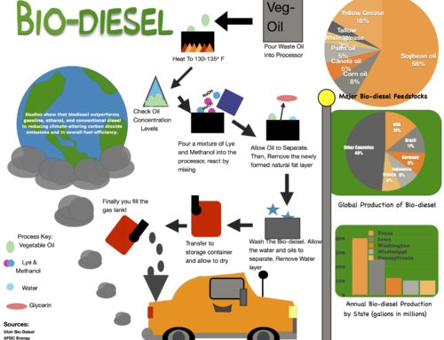 Infographic: Bio-diesel